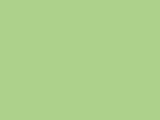 0660 Verde Acido