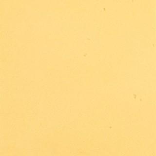 Canary F17554_