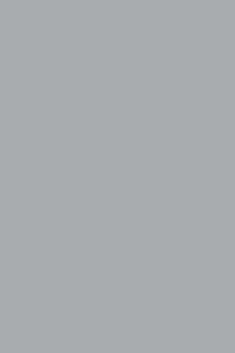 G013 GRIS AVERSE